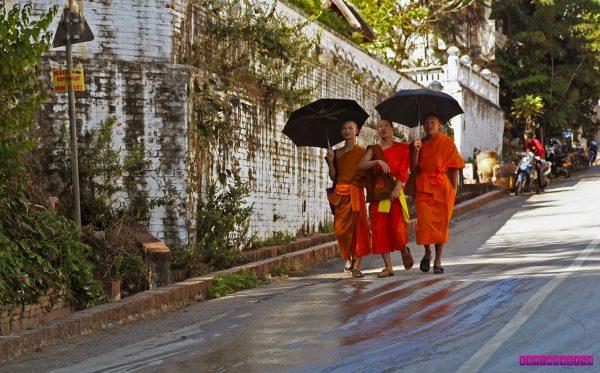 Uma cena típica de Luang Prabang: monges pela rua