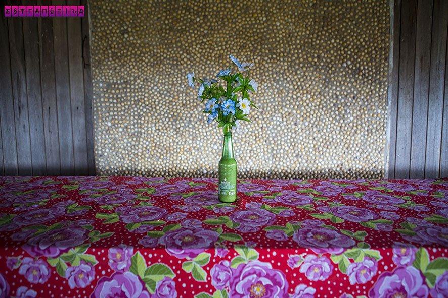 As paredes de toda a casa são cobertas com conchas! É tudo muito cuidadoso e bonito.
