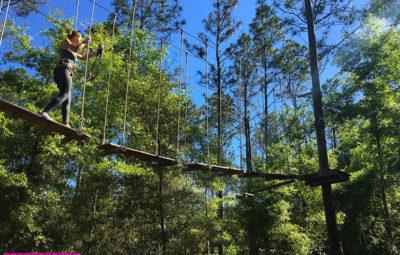 orlando tree trek arvorismo 3