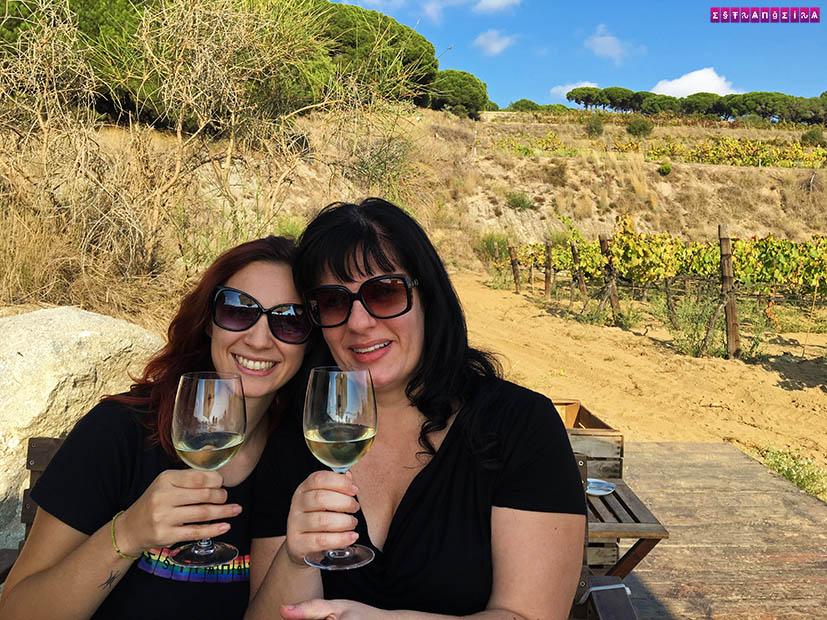 Vinhos da Bouquet D'Alella